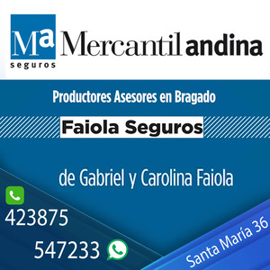 mercantil andina bragado tv