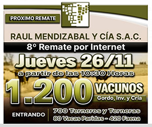 remate mendizabal bragado tv